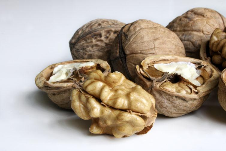 wat is biologisch ecologisch walnoten