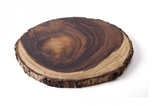 duurzaam cadeau boomstamonderzetter